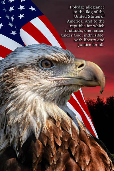 Wall Art - Photograph - Eagle With Pledge Allegiance by Thomas Woolworth