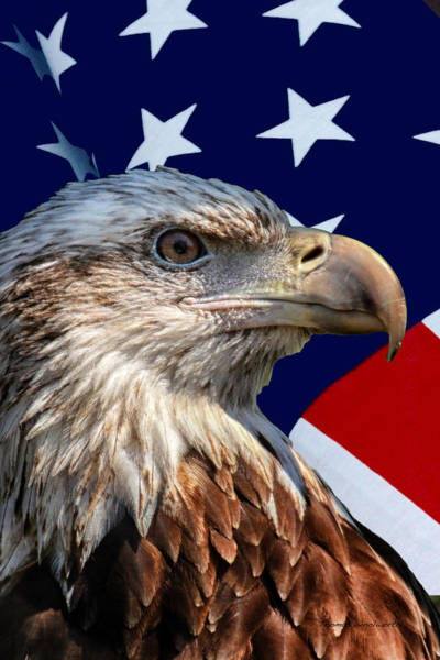 Wall Art - Photograph - Eagle With Us American Flag by Thomas Woolworth