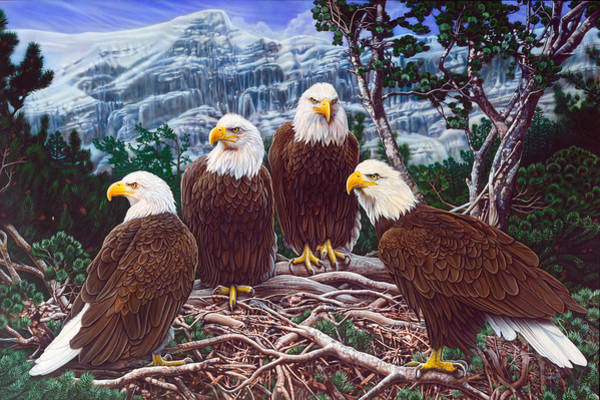 Wall Art - Painting - Eagles by JQ Licensing