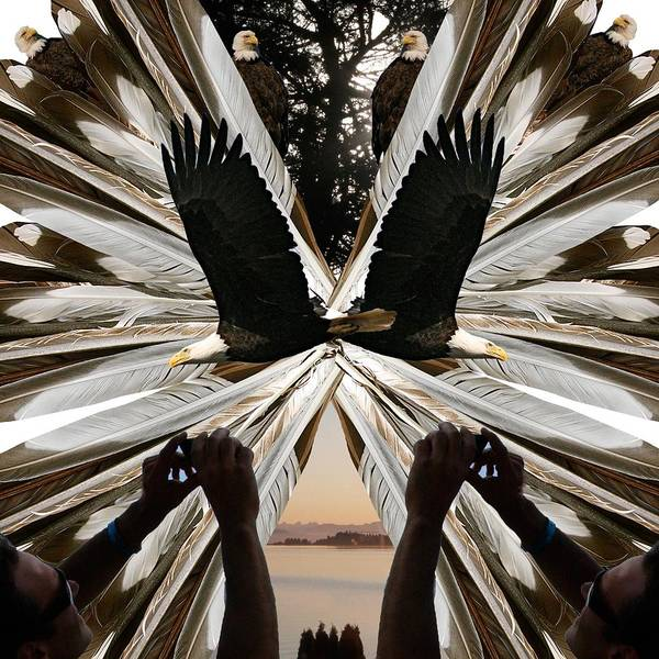 Photograph - Eagle's Song by Alicia Kent