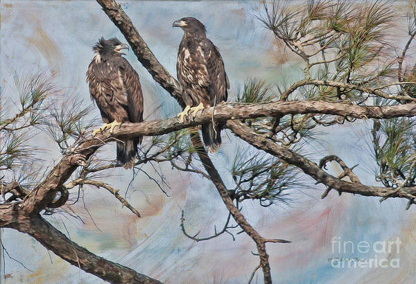 Photograph - Eaglets In Oil by Deborah Benoit
