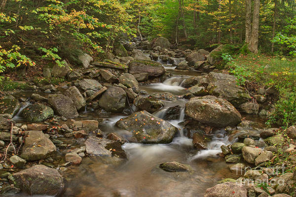 Photograph - Early Autumn Flow by Charles Kozierok