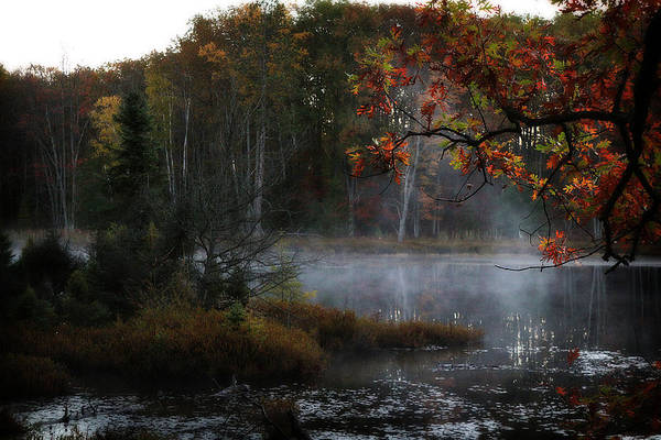Photograph - Early Autumn Morning by Scott Hovind