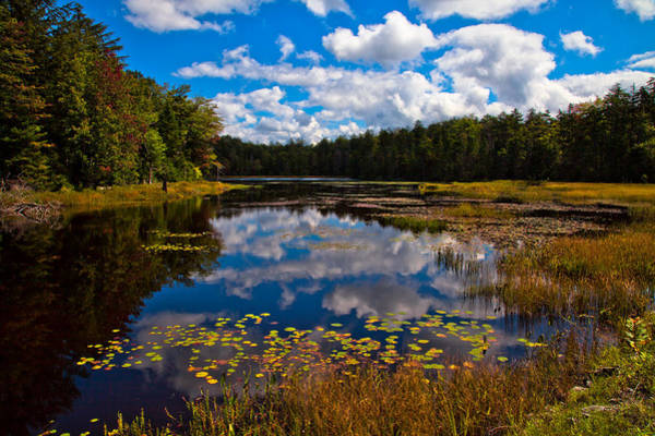Photograph - Early Autumn On Fly Pond by David Patterson