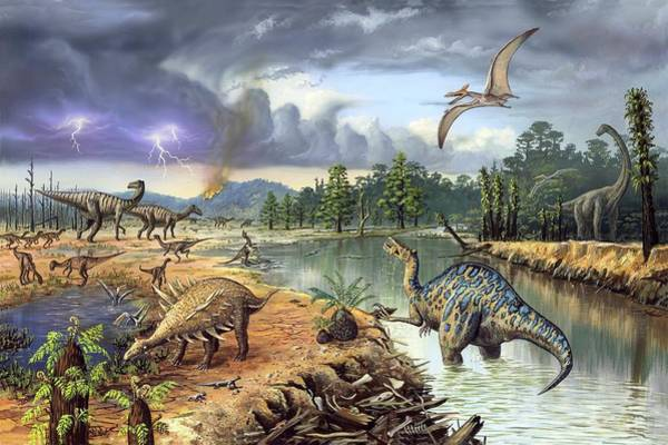 Wall Art - Photograph - Early Cretaceous Life by Richard Bizley