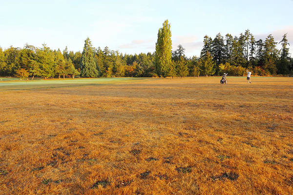 Photograph - Early Fall Morning In The Rough On The Golf Course by Simply  Photos