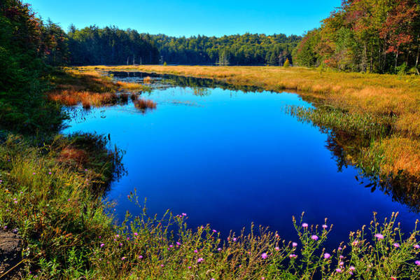 Photograph - Early Fall On Cary Lake by David Patterson