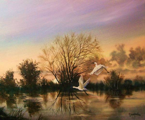 Water Foul Painting - Early Flight by Tom Shropshire