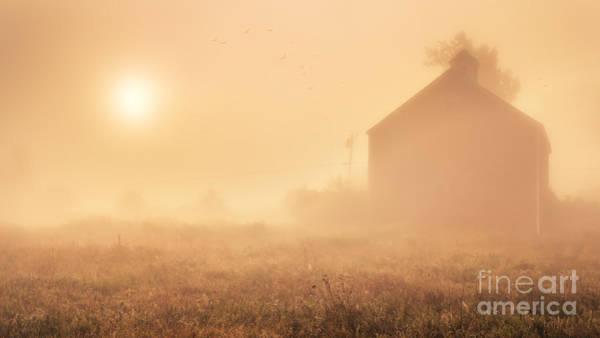 Early Foggy Morning On The Farm Art Print