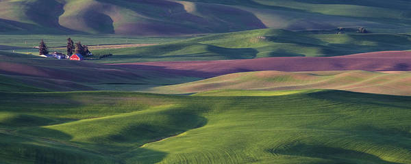 Late Afternoon Wall Art - Photograph - Early Light In The Palouse by Latah Trail Foundation
