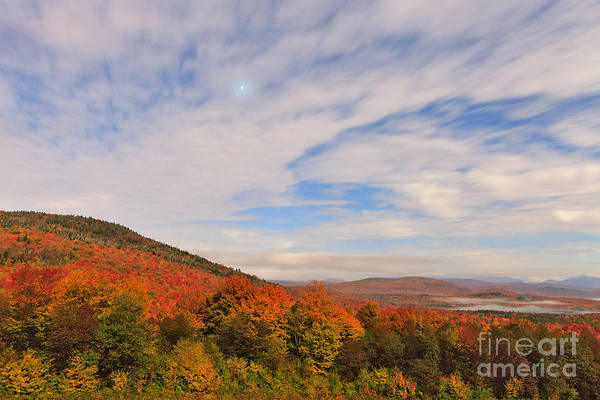 Photograph - Early Morning Clearing by Charles Kozierok