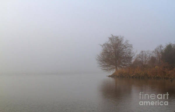 Photograph - Early Morning Fog by David Cutts