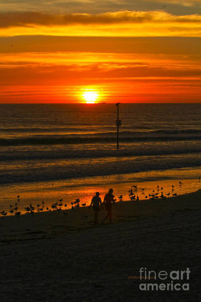 Photograph - Early Morning Glow by Deborah Benoit