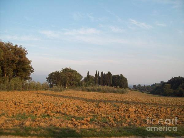 Photograph - Early Morning In Loppiano by Alessandra Di Noto