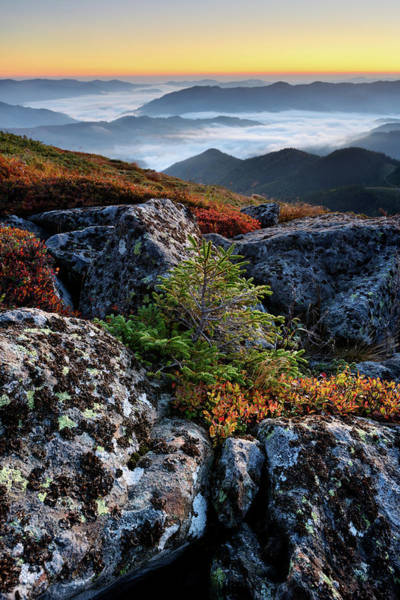 Orange Lichen Photograph - Early Morning Landscape In Mountains by Rezus