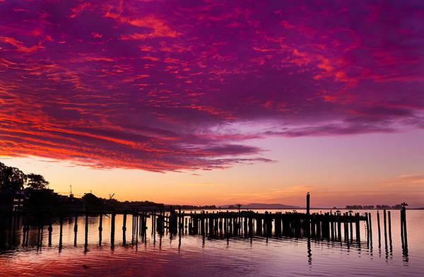 Wall Art - Photograph - Early Morning Light On Bodega Bay by Kathleen Bishop