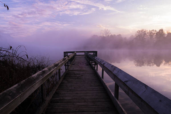 Photograph - Early Morning Mist by Paul Johnson