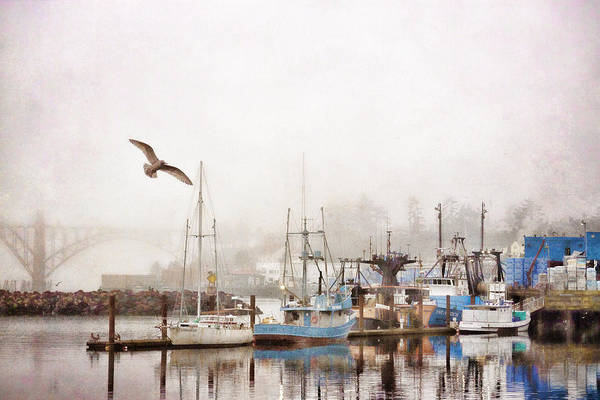 Oregon Coast Wall Art - Photograph - Early Morning Newport Oregon by Carol Leigh