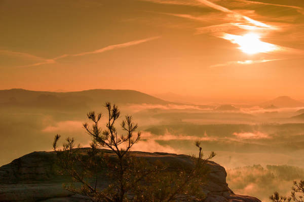Early Morning On The Lilienstein Art Print