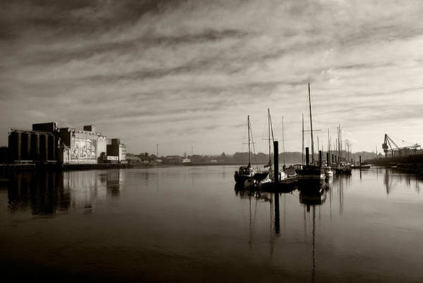 Suir Photograph - Early Morning River Suir, Waterford by Panoramic Images