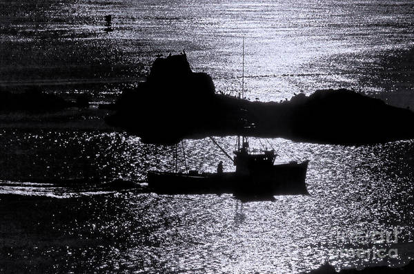 Wall Art - Photograph - Early Morning Silhouette At Sail Rock Narrows by Marty Saccone