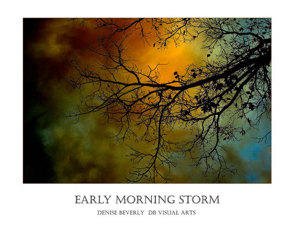 Photograph - Early Morning Storm by Denise Beverly
