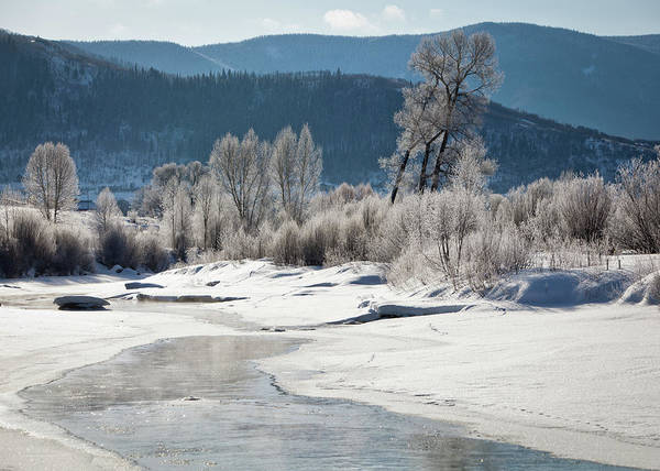Steamboat Springs Photograph - Early Morning, Yampa River, Steamboat by Karen Desjardin