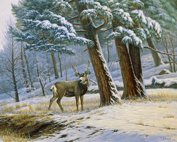 Wall Art - Painting - Early Snow- Mule Deer by Paul Krapf