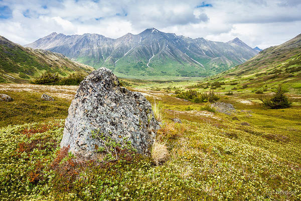 Glacial Erratic Photograph - Early Summer In The Chugach by Tim Newton