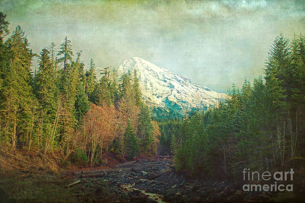 Photograph - Early Winter's Day - Mt Rainier by Beve Brown-Clark Photography