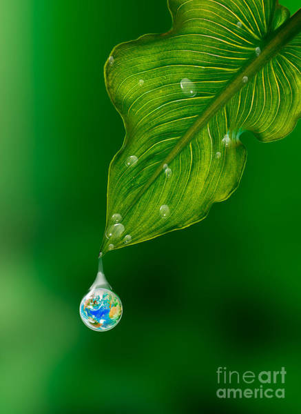 Photograph - Earth In A Drop Of Water by Mike Agliolo