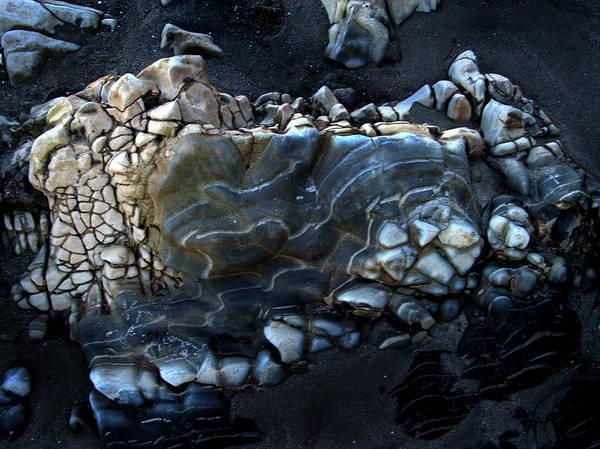 Photograph - Earthbones by Randal Bruck