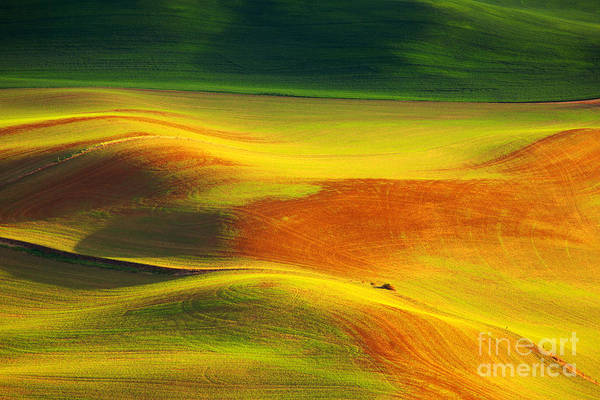 Photograph - Earths Colors by Beve Brown-Clark Photography