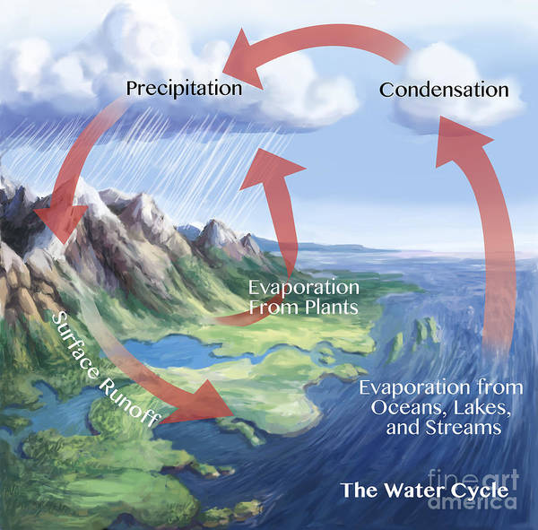 Photograph - Earths Water Cycle by Spencer Sutton