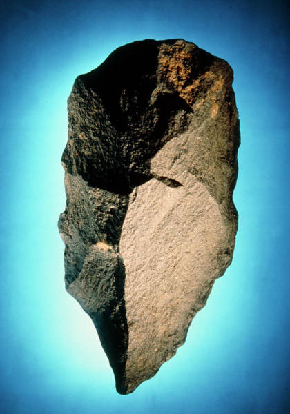 Prehistoric Photograph - East African Handaxe From The Acheulean Culture by John Reader/science Photo Library