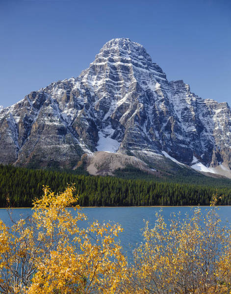 Photograph - 1m3636-east Face Of Mt. Chephren by Ed  Cooper Photography