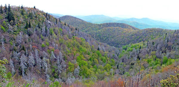Photograph - East Fork Overlook Near Mm 418 On The Blueridge Parkway by Duane McCullough