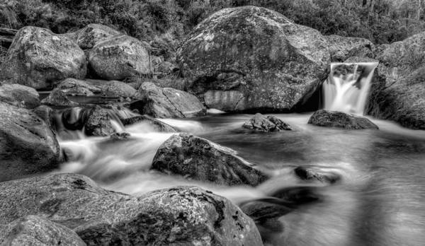 Photograph - East Kiewa River by Mark Lucey