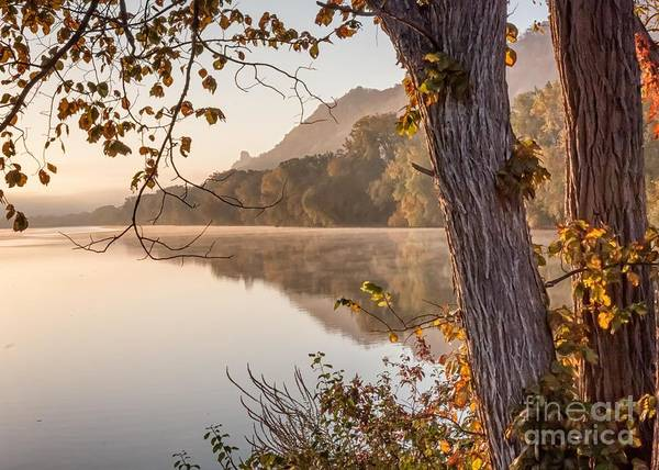 Photograph - East Lake Morning by Kari Yearous