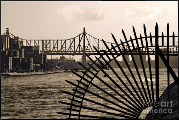Wall Art - Photograph - East River View by Madeline Ellis