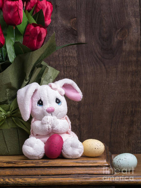 Photograph - Easter Bunny Card by Edward Fielding
