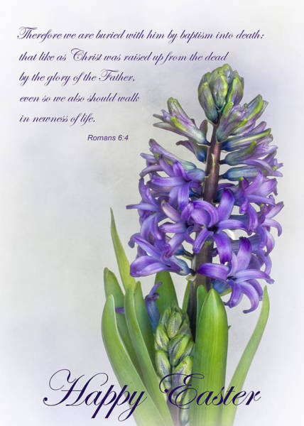 Scripture Photograph - Easter by David and Carol Kelly