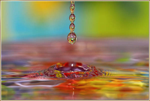 Wall Art - Photograph - Easter Drop Water  by Geraldine Scull