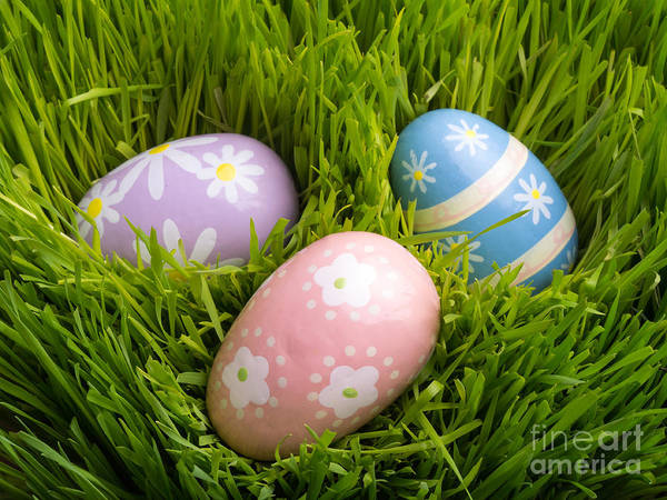 Wall Art - Photograph - Easter Eggs In The Grass by Edward Fielding