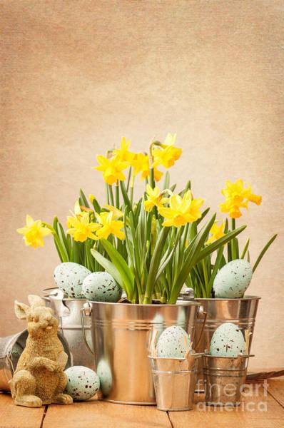 Metal Bucket Photograph - Easter Setting by Amanda Elwell
