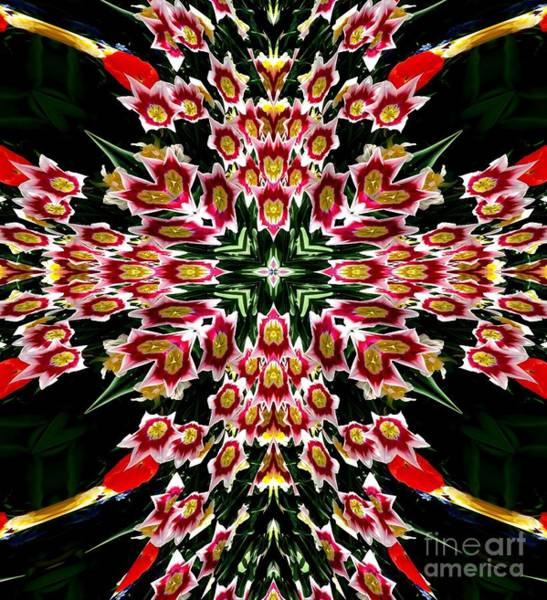Photograph - Easter Tulip Cross  by Rose Santuci-Sofranko