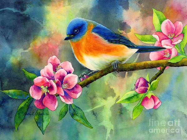 Songbird Painting - Eastern Bluebird by Hailey E Herrera