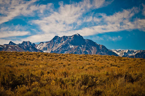 Photograph - Eastern Sierra by Sherri Meyer