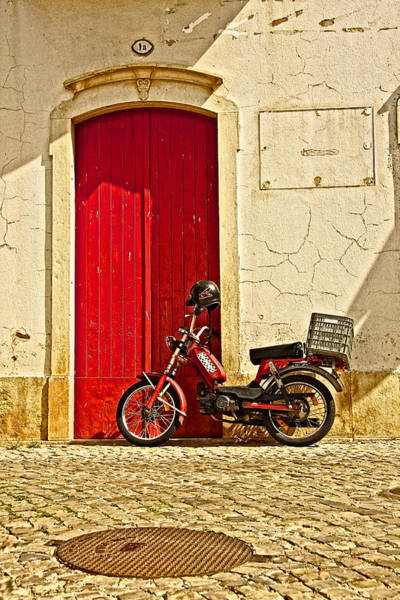 Photograph - Easy Rider by Colette Panaioti