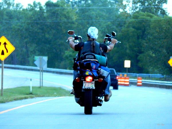 Photograph - Easy Rider by Wild Thing